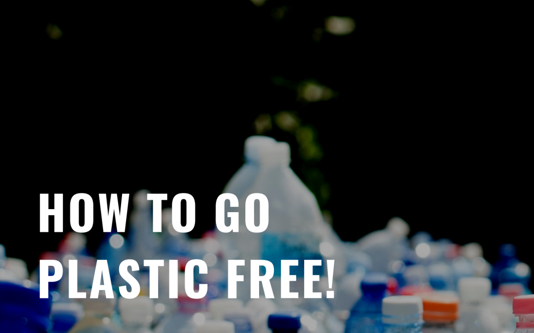 How to go plastic free! Here's what I'm doing.