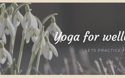 Inishowen Yoga Online Yoga Classes